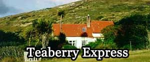 Teaberry Express